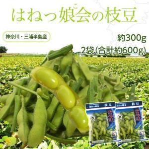 えだまめ 枝豆 神奈川県 三浦半島産 はねっ娘会の枝豆 約300g 2袋 合計約600g 冷蔵|umeebeccyasannriku