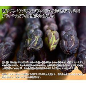 『アスパラガス3色セット』(グリーン・ホワイト・紫)各約200g 福島・会津産※冷蔵/送料無料|umeebeccyasannriku|04