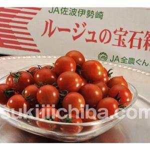 トマト『ルージュの宝石箱』群馬産 約900g フルーツトマト ミニトマト とまと 野菜 ギフト プレゼント 贈り物 贈答|umeebeccyasannriku