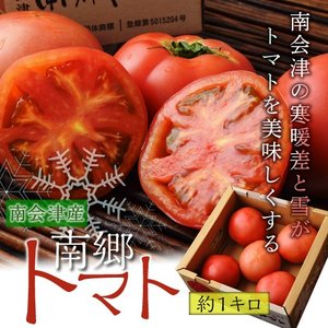 トマト とまと 福島 南会津 南郷トマト 約1kg お試し1箱 冷蔵|umeebeccyasannriku