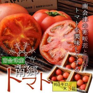 とまと ブランド 送料無料 福島 南会津 南郷トマト 約1kg ×3箱 冷蔵|umeebeccyasannriku