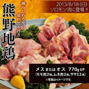 肉 鶏肉 三重県産 熊野地鶏 メスまたはオス 770gUP ムネ肉2枚 モモ肉2枚 ササミ2本 冷凍 同梱不可 送料無料|umeebeccyasannriku