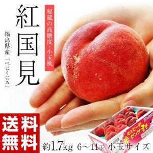 福島県産 伊達の桃『紅国見』6〜11玉 約1.7kg ※産地...