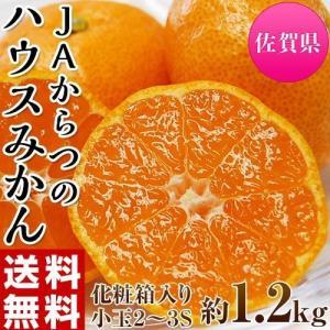 柑橘 みかん 佐賀県産 JAからつ 小玉みかん 2〜3Sサイズ 約1.2キロ 化粧箱 送料無料|umeebeccyasannriku