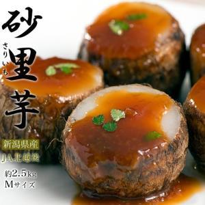 里芋 さといも サトイモ ブランド 里芋 新潟県産 砂里芋(さりいも) Mサイズ 約2.5kg