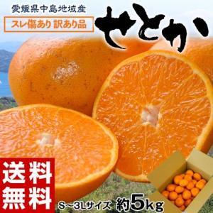柑橘 フルーツ 愛媛県 中島地域産 訳あり せとか 約5kg S〜3Lサイズ 目安として16〜33玉 常温 送料無料|umeebeccyasannriku
