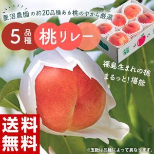 桃 もも お中元 福島オリジナル品種限定 菱沼農園がつくる 5品種桃リレー (はつひめ、あかつき、ふくあかり、かぐや、黄ららのきわみ) 各約2キロ 送料無料|umeebeccyasannriku