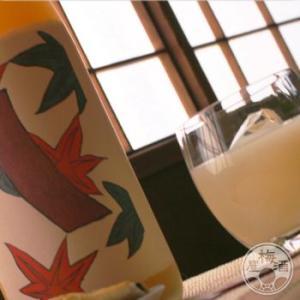 青短の林檎酒〜紅葉に青短〜  1800ml 「八木酒造/奈良」 umeshu 04