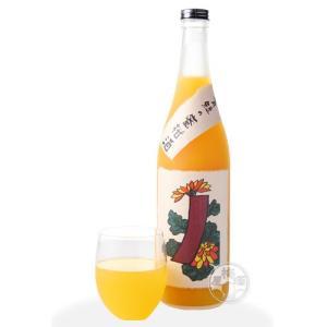青短の蜜柑酒〜菊に青短〜  720ml 「八木酒造/奈良」|umeshu|02