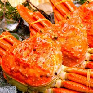 ズワイガニ 特大 厳選ビッグサイズ 贈答 ギフト 天然 ずわい蟹 姿 約1kg×1尾