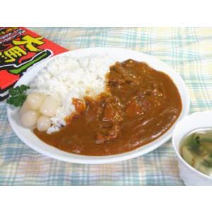 激辛 大馬鹿ヤローカレー(馬肉と鹿肉の煮込みカレー)|uminekotayori