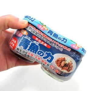 青魚の力 ビタミンA・ビタミンE・DHA・EPA配合|uminekotayori