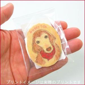プリント小判せんべい「チビせん」ピロ個装-オリジナル写真やイラストを塩バターせんべいでプチギフト|uminekotayori