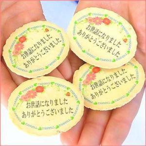 サンキューせんべい小判ピロ個装|uminekotayori