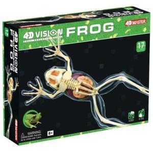 4D立体パズル動物解剖フルスケルトンモデル カエル Frog uminekoya