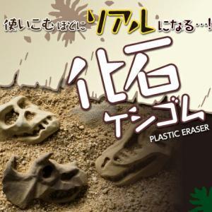 化石ケシゴム(シード) uminekoya