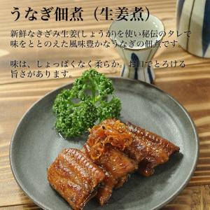 静岡県 国産うなぎ佃煮 しょうが風味|unagi|02