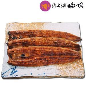 浜名湖産ウナギ長蒲焼き 中 100gサイズ 3本ギフトセット...
