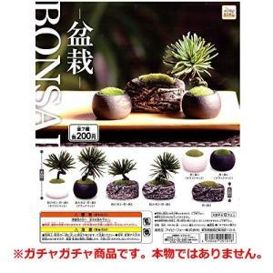 BONSAI 盆栽 [全7種セット(フルコンプ)]ガチャガチャ本物ではありません。 unicorn802