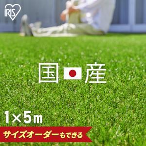 人工芝 ロール 1m DIY 庭 安い リアル人工芝 IP-3015 アイリスソーコー (D)