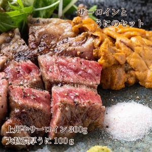 送料無料:熟成上州牛 サーロイン 300gと 大粒濃厚 うに 100gのセット 肉 ステーキ 和牛 肉 熟成 海鮮  美味しい お取り寄せ 内祝い プレゼント|unihamburg