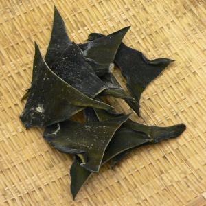 自然の味そのまんま 道南産 真昆布の根昆布[23g]|uocha