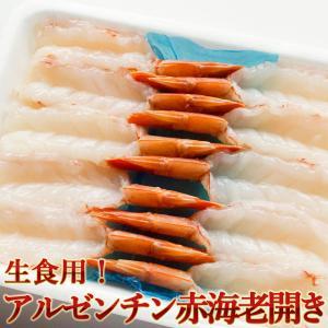 生食用 アルゼンチン赤海老(アカエビ)開き 10尾入り×2パック