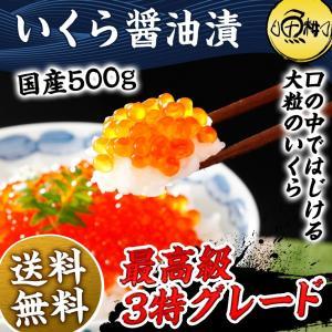 いくら 醤油漬け 500g 父の日ギフト 岩手三陸産 イクラ...