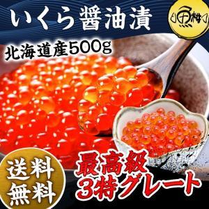 いくら 500g 冷凍 醤油漬け 北海道産 イクラ お取り寄...