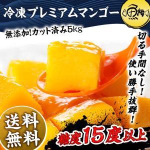 プレミアムマンゴー 冷凍 5kg 無添加 ベトナム産 500g×10 カット済み フルーツ