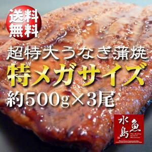 炭火焼 鰻うなぎ蒲焼き 超特大 極厚の食べ応え 特メガサイズ...