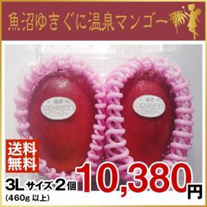 魚沼ゆきぐに温泉マンゴー 3Lサイズ2個(7月より、順次発送致します。)|uonumanoyousei