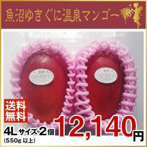魚沼ゆきぐに温泉マンゴー 4Lサイズ2個(7月より、順次発送致します。)|uonumanoyousei