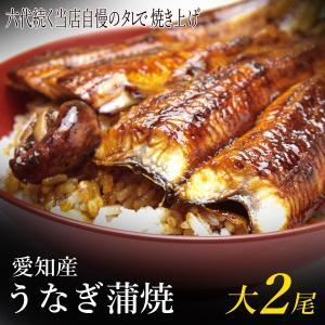 うなぎ蒲焼き 大2尾 愛知産 朝開き 肝・粉山椒・山葵付き 冷蔵発送