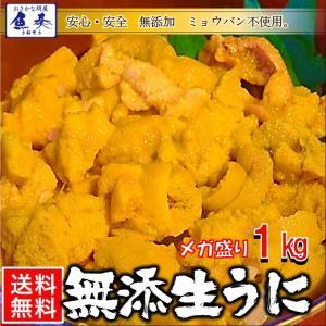うに 雲丹  冷凍生うに 無添加 1kg(100g×10P)ミョウバン不使用 ウニ 送料無料 安心・安全 うに丼20杯分 寿司 北海丼|uosou