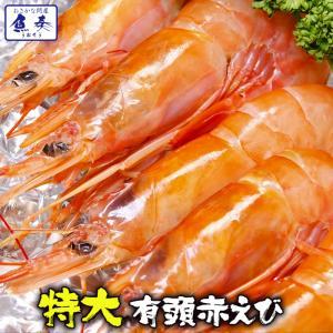 赤えび 赤海老 天然 有頭 特大サイズ 10尾 最安挑戦 BBQ 海鮮