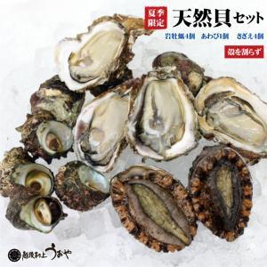 日本海産 天然貝セットB《岩牡蠣4個〈割らずに〉・あわび1個・さざえ4個》 魚介セット/貝類/お中元/ギフト|uoya