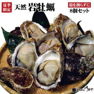 日本海産 天然岩牡蠣 割らずにお届け 8個セット 殻付き かき カキ お中元 ギフト|uoya