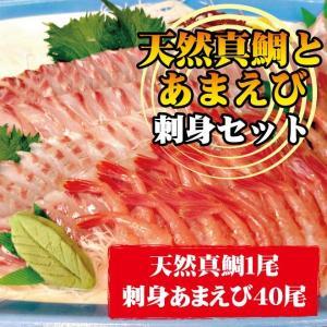 天然真鯛と甘海老の刺身セット (真鯛の頭は二つ割にしてお届け)|uoya