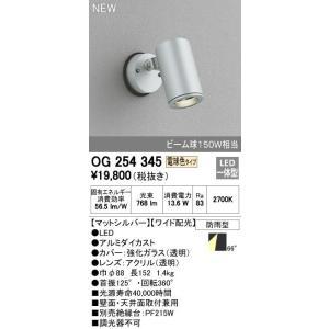 オーデリック エクステリアライト スポットライト 【OG 254 345】OG254345[新品]|up-b