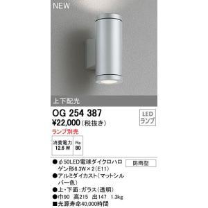 オーデリック エクステリアライト ポーチライト 【OG 254 387】OG254387[新品]|up-b