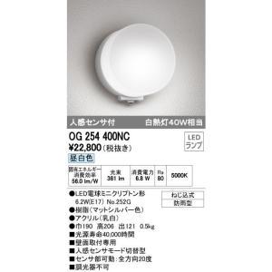 オーデリック エクステリアライト ポーチライト 【OG 254 400NC】OG254400NC[新品]|up-b