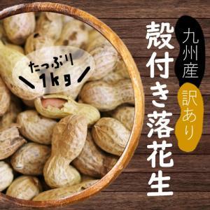 訳あり国産殻付き落花生 1kg|urakawamameten