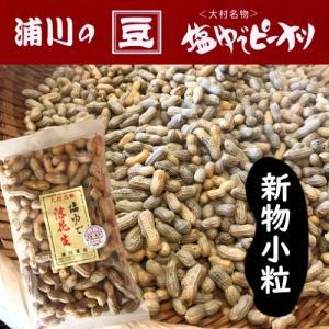 新物 塩ゆで落花生 【小粒】 500g 大村産 ゆでピープロジェクト|urakawamameten
