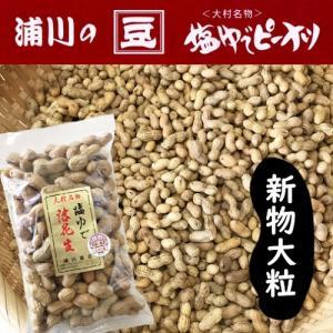 新物 塩ゆで落花生 【大粒】 500g 大村産 ゆでピープロジェクト|urakawamameten
