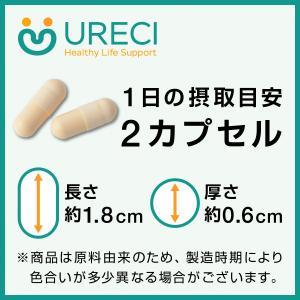 コエンザイムQ10フュージョンパワー(試食用20粒)《ネコポス商品》/ 還元型&包接体コエンザイムQ10+シトルリン+カルニチン+リコピン配合サプリメント|ureci|04