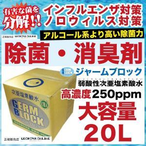 【インフルエンザ・ノロウイルス・O157・感染予防】 除菌水...