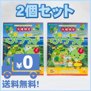 沖縄限定 ぷっちょスティック シークヮーサー 5本入り ×2箱セット UHA味覚糖 全国送料無料商品 クリックポスト配送