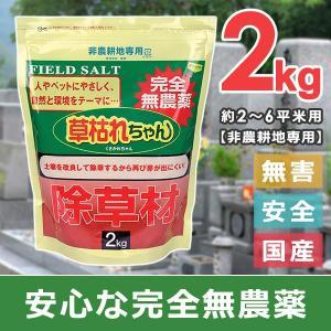 雑草対策 庭 除草剤 安全 強力 ペット 子供 無害 無農薬 強力 2kg