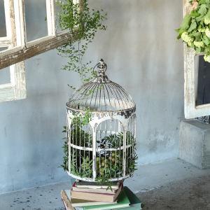 鳥かご 鳥篭 アイアン おしゃれ インテリア シャビー アンティーク レトロ スタジオ|usagi-shop